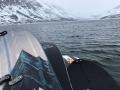 konvoi snowboards on a boat