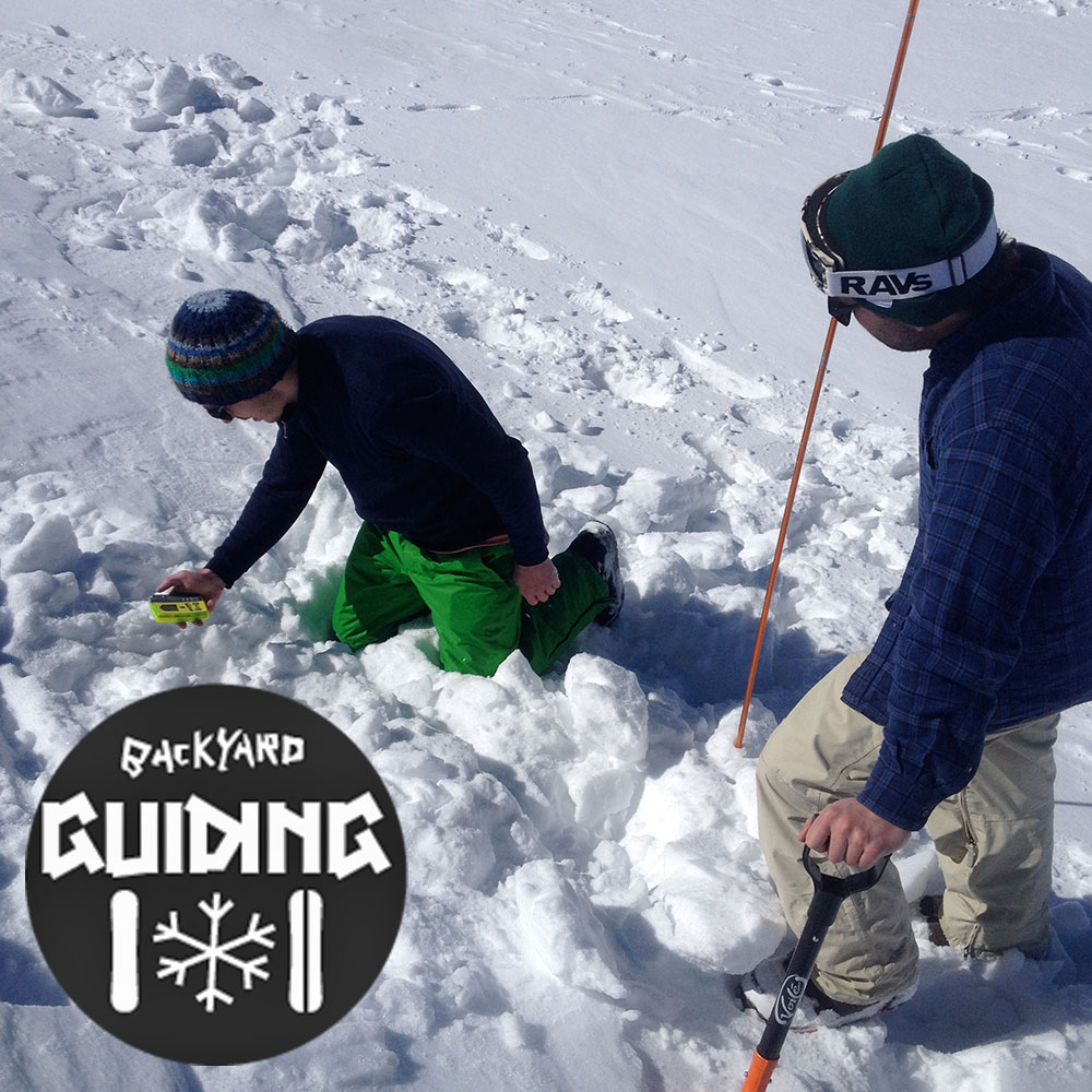 pieps search zillertal backyard guiding