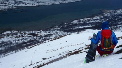 reindeers lyngen splitboarding