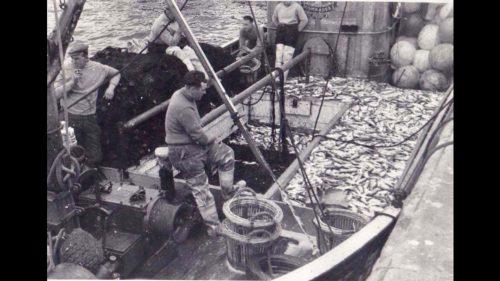 fishing vessel comrades
